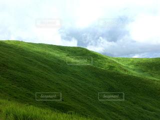あの草原の写真・画像素材[786116]