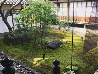 高台寺(京都)の中庭の写真・画像素材[1066396]