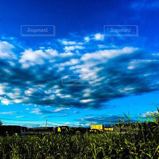 黄色と青の空の写真・画像素材[786143]