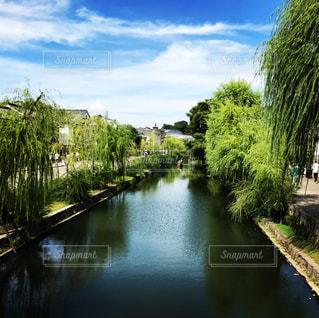 木々 に囲まれた水の体の上の橋の写真・画像素材[786151]