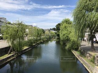 水の体の上の橋の写真・画像素材[786214]