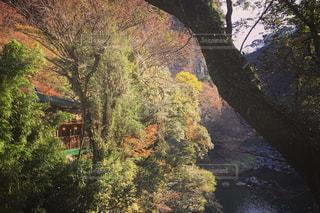 高千穂峡の写真・画像素材[904868]