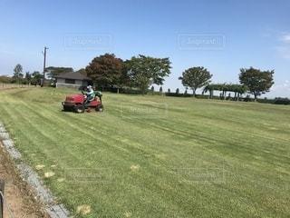 芝刈りの写真・画像素材[797602]