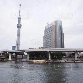 隅田川沿いから見えるスカイツリーの写真・画像素材[802234]
