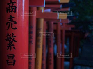 根津神社の鳥居の写真・画像素材[1518599]