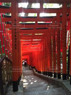 日枝神社の千本鳥居の写真・画像素材[788861]