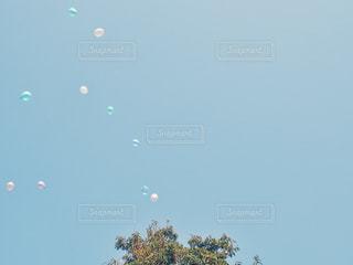 空に凧の飛行の人々 のグループの写真・画像素材[1534204]
