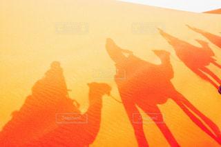 日没のぼやけた画像の写真・画像素材[1534227]