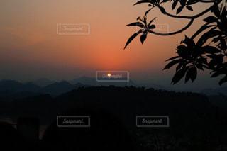 背景の夕日とヤシの木のグループの写真・画像素材[1549147]