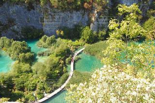 プリトヴィツェ湖国立公園を背景にした水を背景にした庭園の写真・画像素材[2387200]