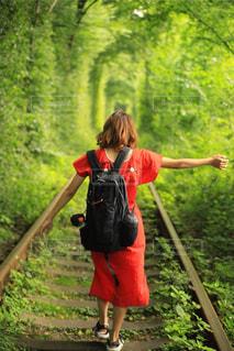 恋のトンネルを歩くの写真・画像素材[3185709]