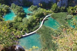 プリトヴィツェ湖国立公園でハイキングの写真・画像素材[3185717]