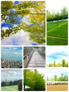 風景 - No.791460