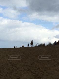 砂丘とラクダの写真・画像素材[790808]