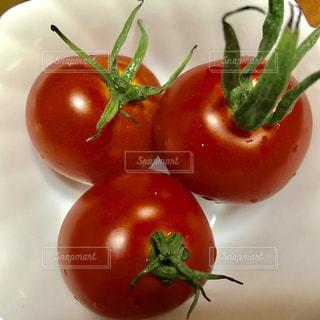白い皿にトマトの写真・画像素材[790875]