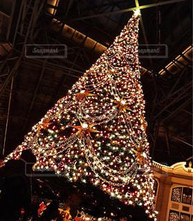 大きなクリスマスツリーの写真・画像素材[791216]