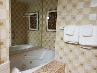 アメリカの大きなバスルームの写真・画像素材[793454]