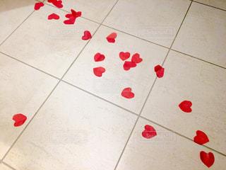 赤い床の写真・画像素材[999520]