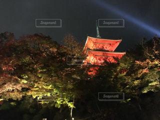 京都 清水寺の紅葉 - No.864076