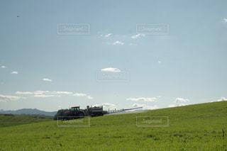 近くに緑豊かな緑のフィールドのの写真・画像素材[792232]