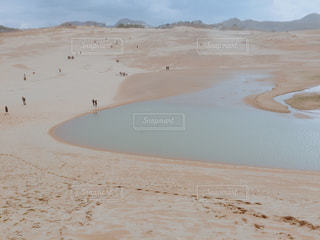 鳥取砂丘の風景の写真・画像素材[859919]