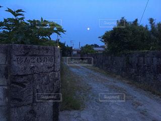 新島村 砂んごいの道の写真・画像素材[795044]
