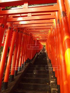赤い椅子の行の写真・画像素材[806092]