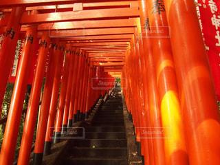 赤い椅子の行の写真・画像素材[806093]