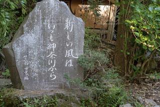 ひっそりと立つ石碑の写真・画像素材[1173611]