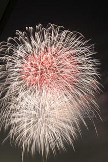 空に花火の写真・画像素材[794936]