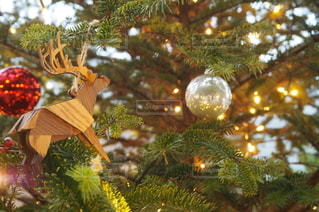 クリスマスツリーの写真・画像素材[2504535]