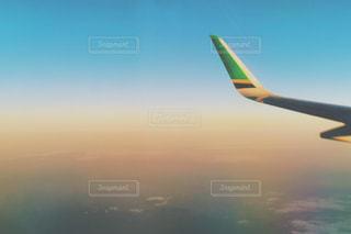 翼の写真・画像素材[796459]
