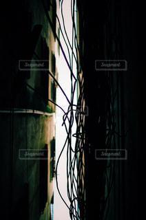 見上げた狭い空と電線の写真・画像素材[806349]