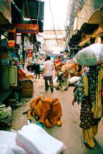 インドの路地裏の写真・画像素材[829328]