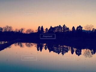 田んぼに映る夕空の写真・画像素材[807250]