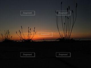 夕暮れ空の写真・画像素材[826335]