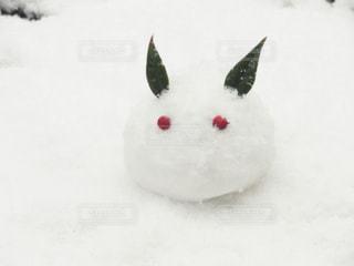 雪うさぎの写真・画像素材[839667]