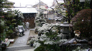 雪に覆われた家の写真・画像素材[795621]