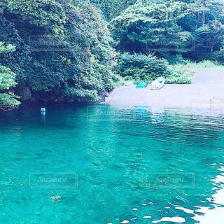 水の体の横にあるプールの写真・画像素材[795904]