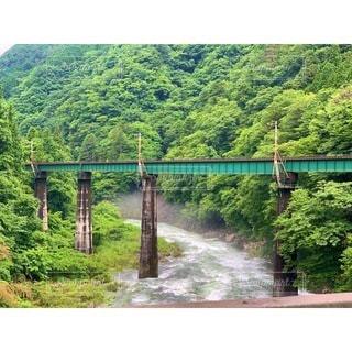 緑豊かな森の上の橋を渡る列車の写真・画像素材[3392766]