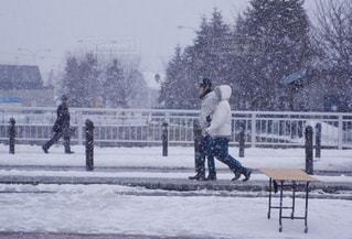 雪の公園を歩くカップル - No.806158