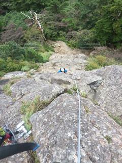 背景の木と岩が多い山の写真・画像素材[796730]