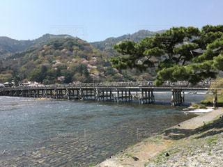 京都嵐山渡月橋の写真・画像素材[798259]