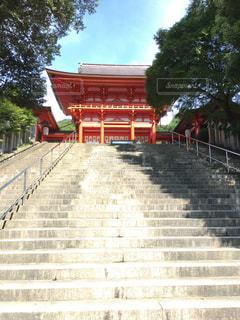 近江神宮楼門の写真・画像素材[798478]