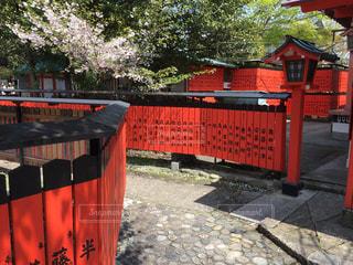 車折神社 芸能神社の写真・画像素材[798618]