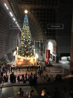 京都駅クリスマスの写真・画像素材[798821]