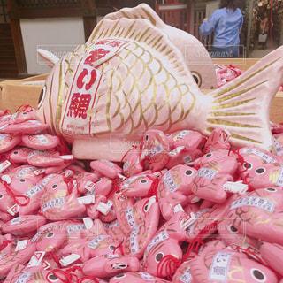 川越氷川神社の鯛みくじの写真・画像素材[1057409]