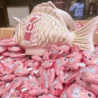 川越氷川神社の鯛みくじの写真・画像素材[1057410]