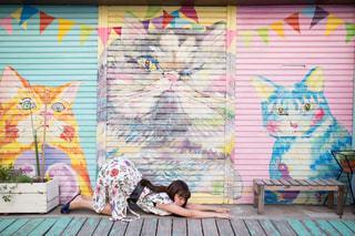 猫のポーズ🐈🐈 - No.799615