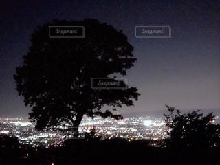 若草山夜景の写真・画像素材[1173321]